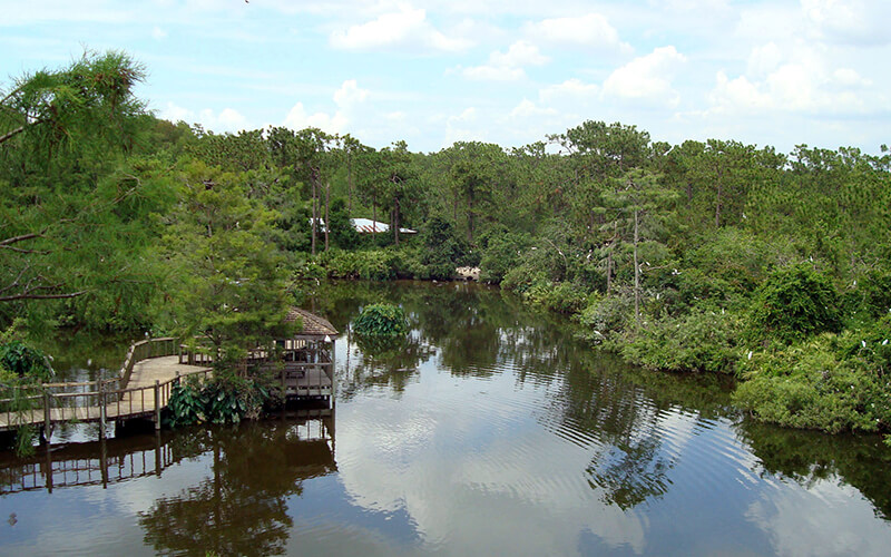 View of the lake at Gatorland in Kissimmee, Florida