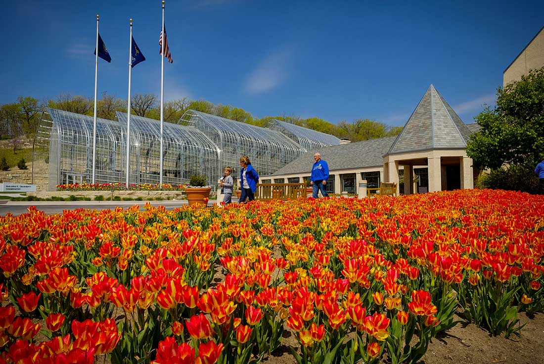 Visitors To At The Lauritzen Gardens In Omaha, Nebraska Walk Past A Bed Of  Red
