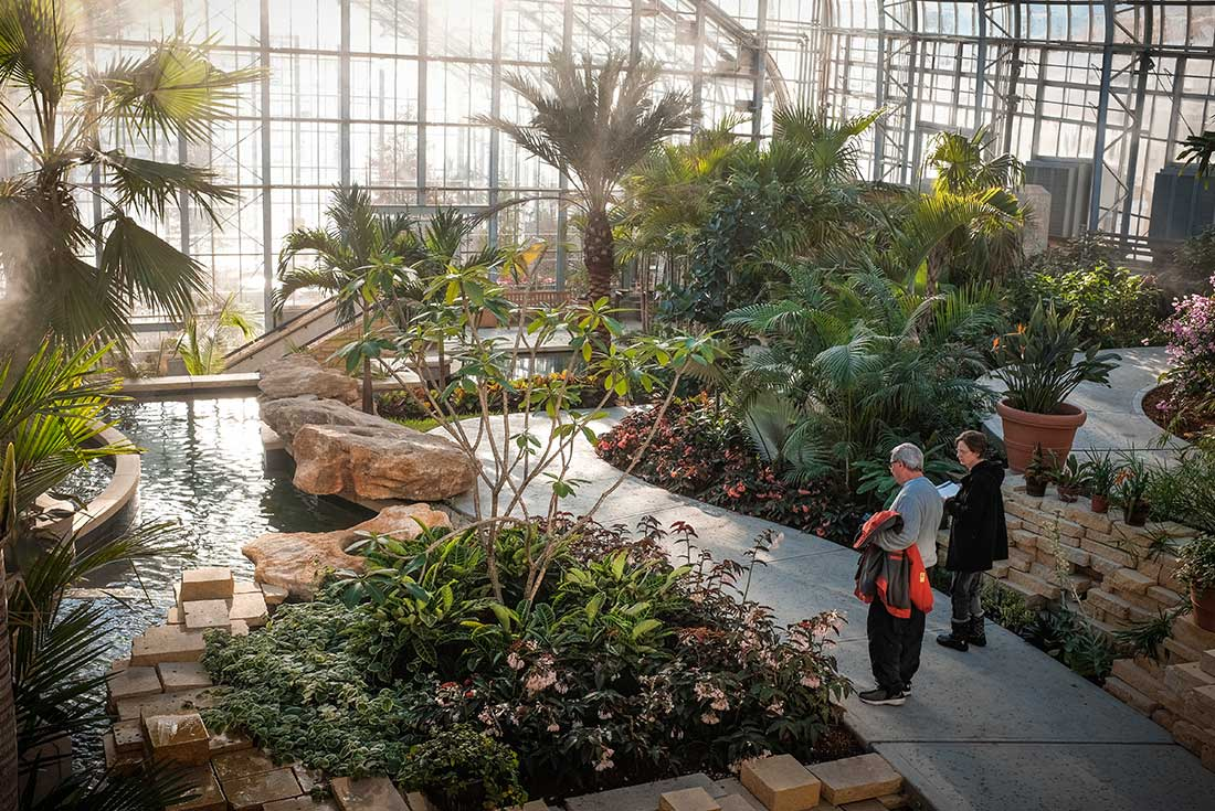 A Couple Stands By Tropical Plants And Water Feature In The Marjorie K.  Daugherty Conservatory