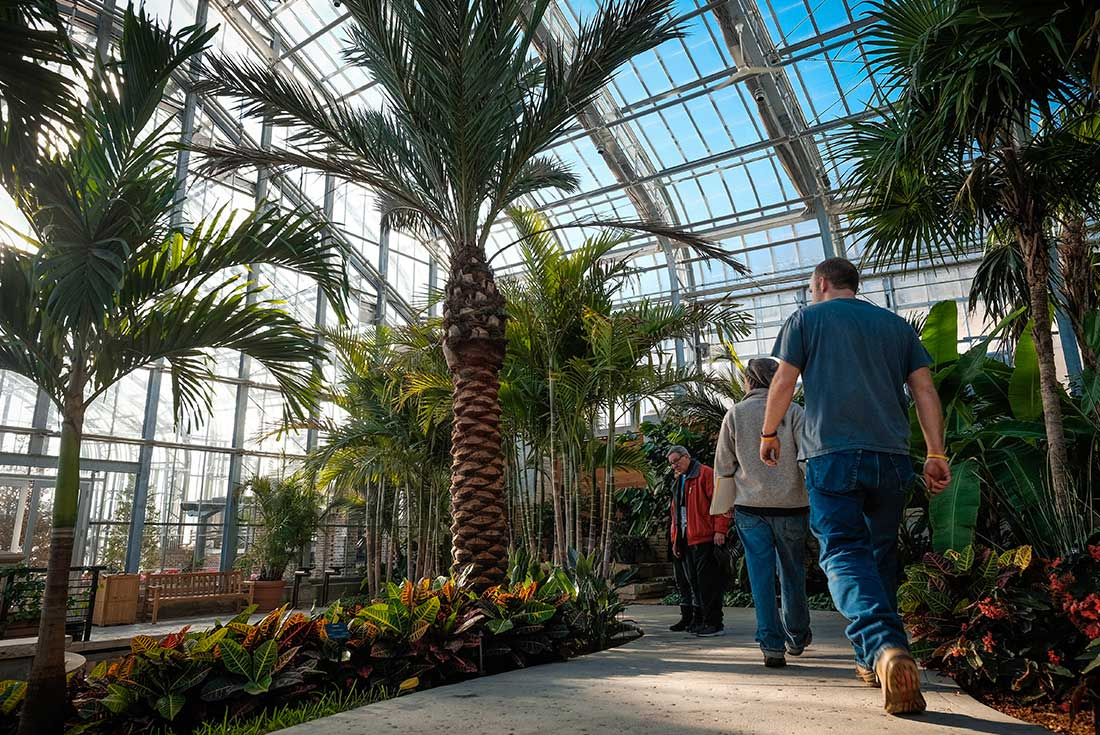Visitors walk on a path by palm trees in the Marjorie K. Daugherty Conservatory in Omaha, Nebraska