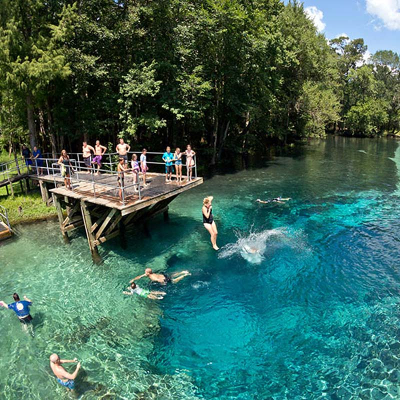 Families jumping in the water of Blue Springs in Columbia County, FL