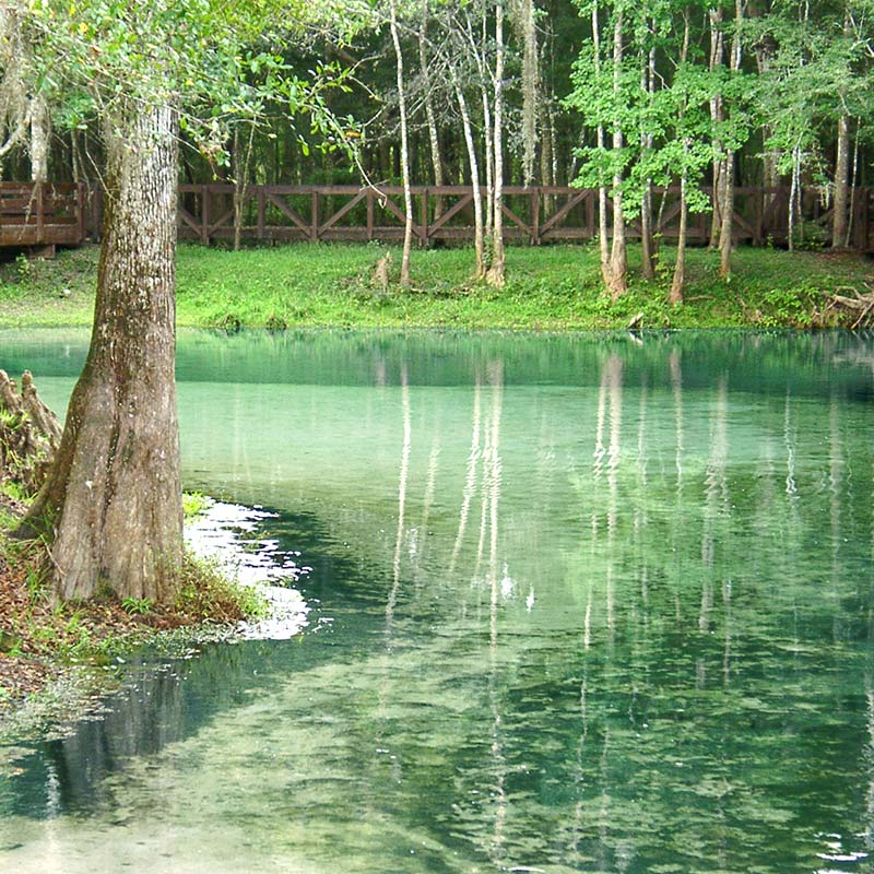The clear, sparkling waters of Poe Springs in Columbia County, FL