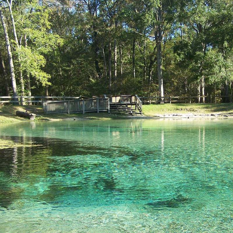The shallow and clear blue waters of Rum Island Springs in Columbia County, FL